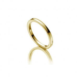 Rubin Memoire-Ring ALL22 - Gelbgold